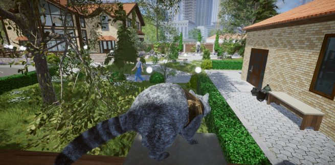 Wanted Raccoon Free Download