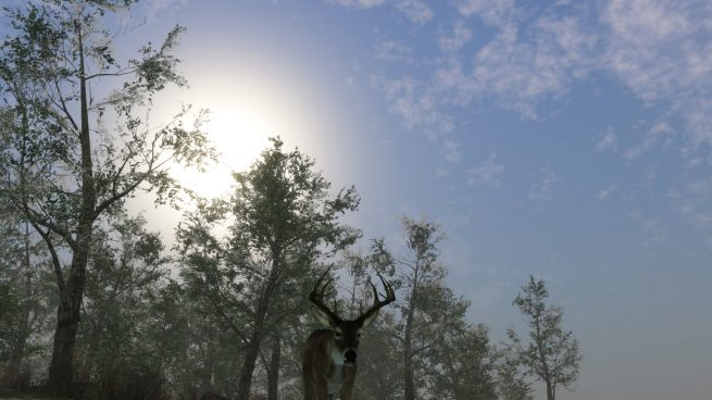 Pro Deer Hunting 2 Free Download